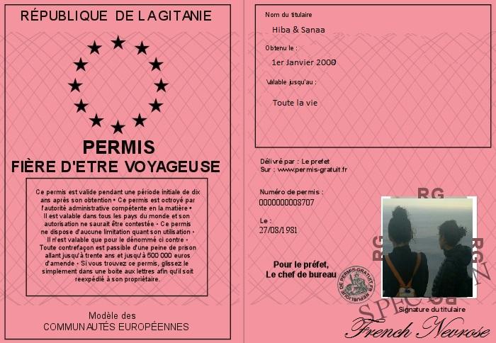 700-8707-permis-fiere-d-etre-voyageuse